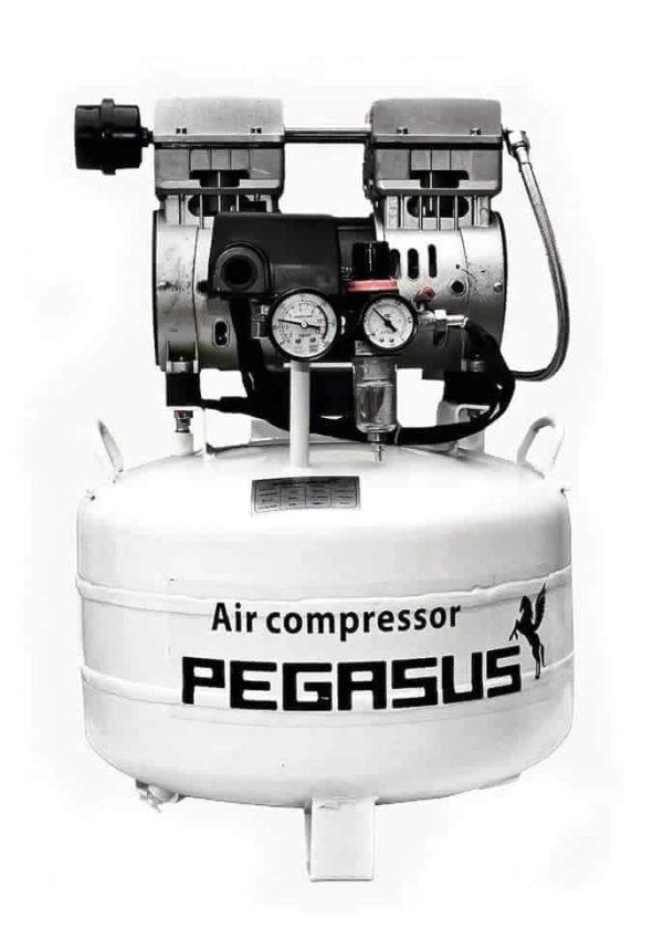 Máy Nén khí pegasus TM-OF550-40L 1