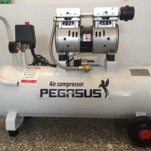Máy nén khí pegasus TM OF550 70L